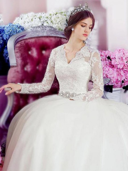 A-Line/Princess Long Sleeves V-neck Cathedral Train Applique Lace Tulle Wedding Dresses